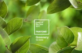 """""""Greenery 2017"""" A Pantone szerint a reményteli lombzöld lesz az év színe"""
